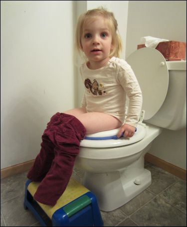 Toddler toilet training walmart usa